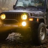jeep-in-the-mist-crop